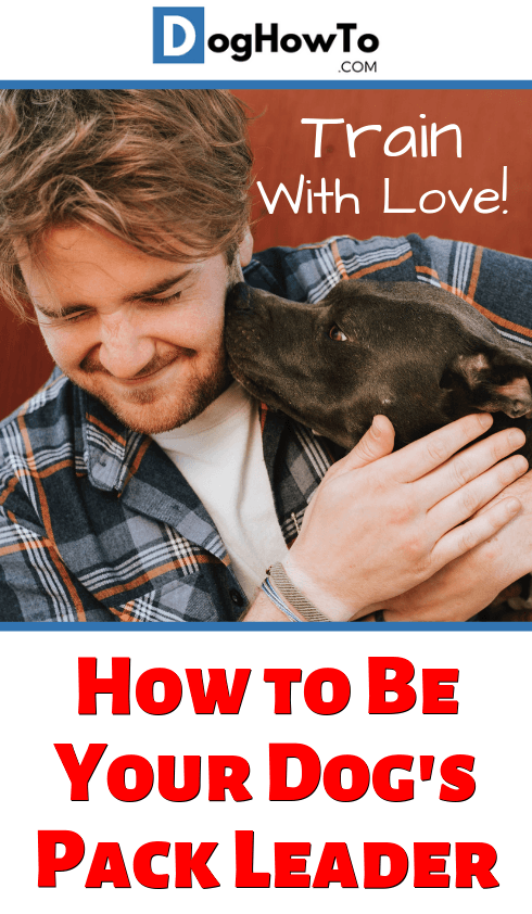How to be your dog's pack leader. Make training better and more enjoyable for you both! Train dog obedience the humane and loving way!